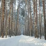 <b>Срочная продажа 2-х комнатной квартиры в Солотче</b>