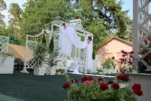 svadba_borovnica2