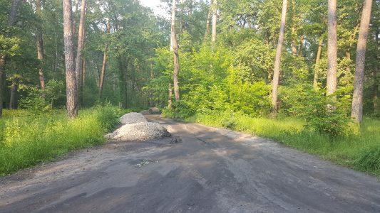 ремонт дороги Лысая гора