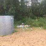 <b>В редакцию сайта Солотча.инфо пожаловались на неудовлетворительное состояние пляжа в Солотче</b>