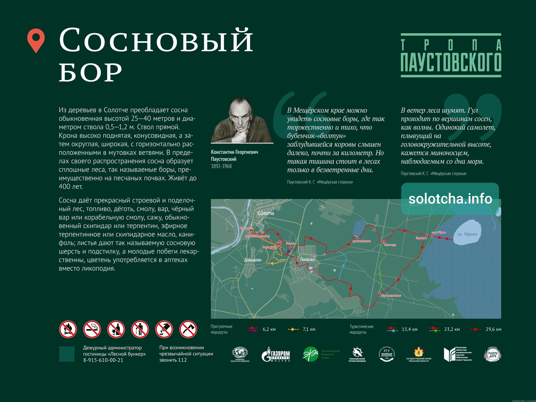 Тропа Паустовского - Сосновый бор